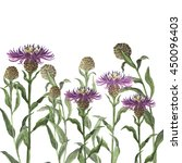 wild flowers background painted ... | Shutterstock . vector #450096403