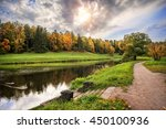 Ducks On Serebryanka River...