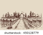 vineyard vector drawing  etch... | Shutterstock .eps vector #450128779