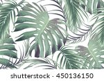 tropical palm leaves  jungle... | Shutterstock .eps vector #450136150