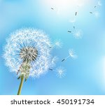 stylish nature blue background... | Shutterstock . vector #450191734
