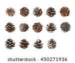 Single Decorational Pine Cone...
