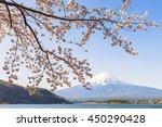 fuji and sakura cherry blossom... | Shutterstock . vector #450290428