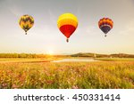 color balloon and beautiful... | Shutterstock . vector #450331414