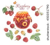 bright hand drawn raspberry set.... | Shutterstock . vector #450351790