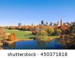 central park new york city  ... | Shutterstock . vector #450371818