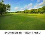 landscape of grass field and... | Shutterstock . vector #450447550