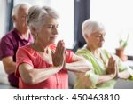 seniors doing yoga with closed... | Shutterstock . vector #450463810