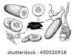 cucumber hand drawn vector set. ... | Shutterstock .eps vector #450520918