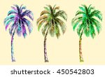 collection tropical palm trees... | Shutterstock .eps vector #450542803