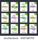 herbs and spices cards set.... | Shutterstock .eps vector #450768793