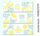 citrus horizontal banner... | Shutterstock .eps vector #450837379