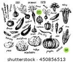 ink sketch of vegetables with... | Shutterstock .eps vector #450856513