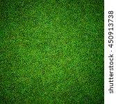 background of beautiful green... | Shutterstock . vector #450913738