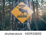 Moose Crossing Sign On A Road...