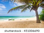 tropical beach with coconut palm | Shutterstock . vector #451006690