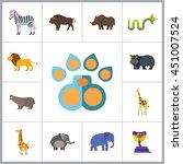 african animals icon set | Shutterstock .eps vector #451007524