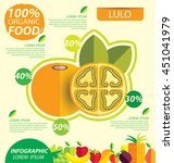 lulo. infographic template.... | Shutterstock .eps vector #451041979