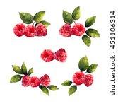 Raspberry. Set Of Realistic...