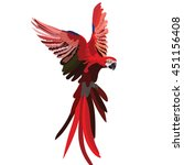 colorful red flying parrot... | Shutterstock .eps vector #451156408