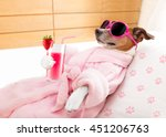 Stock photo jack russell dog relaxing and lying in spa wellness center getting a facial treatment with 451206763