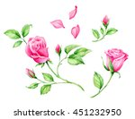 set of hand drawn watercolor... | Shutterstock . vector #451232950