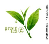 green tea leaf  | Shutterstock .eps vector #451308388