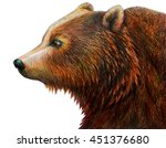 brown bear drawing  ursus... | Shutterstock . vector #451376680
