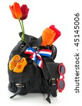 Travel In Holland With Backpac...