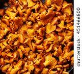 roasted wild forest mushrooms... | Shutterstock . vector #451466800