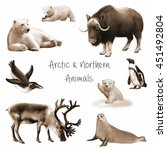 animals of the arctic and... | Shutterstock . vector #451492804