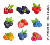 set of different berries.... | Shutterstock .eps vector #451616803