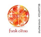watercolor yellow orange fruit... | Shutterstock .eps vector #451699738