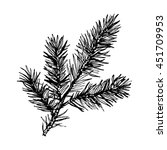 hand drawn pine tree branch... | Shutterstock .eps vector #451709953