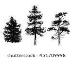 hand drawn set of conifer trees ... | Shutterstock .eps vector #451709998
