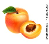 apricot on white background | Shutterstock . vector #451805650