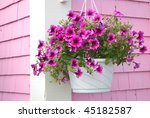 Purple Petunia Hanging Basket...
