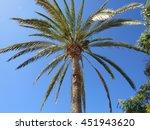 sunny day | Shutterstock . vector #451943620