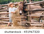 Boy Feeding A Donkey With Hay...