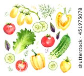 isolated watercolor vegetables... | Shutterstock . vector #451975078