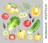isolated watercolor vegetables... | Shutterstock . vector #451975114