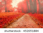 Foggy Autumn Landscape View Of...
