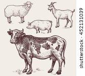 Set Animals   Cow  Sheep  Pig ...
