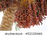 closeup of the cluster of red... | Shutterstock . vector #452133460