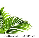 green leaves of palm tree on... | Shutterstock . vector #452334178