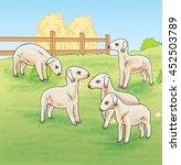 lambs on the farm   jpg... | Shutterstock . vector #452503789