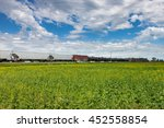 Freight Train Rolling Past Canola Field Under Blue Sky - stock photo