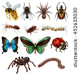 set of different wild insects... | Shutterstock .eps vector #452635030