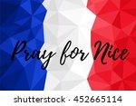 france national flag vector... | Shutterstock .eps vector #452665114
