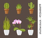 vector set of home plants in... | Shutterstock .eps vector #452668699